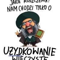 Rozbiór PL 2020 czerwone bierze mafia, żółte Żydzi? {Autor Gabi}