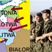 NATO oddaje kraje bałtyckie Rosji. Stolice padają w 60 godzin! Tragiczny scenariusz III wojny światowej {Autor Gabi}