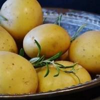 """To jak """"bomba"""" w żołądku: kiedy ziemniaki zamieniają się w truciznę?  ☀Autor Gabi☀"""