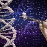 Informacje z RNA można wpisać z powrotem do DNA - CZYLI JAK PREPARAT mRNA - SZCZEPIONKA ZMIENI TWOJE DNA info agencyjne