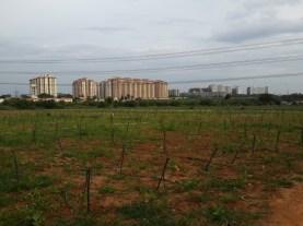 cycling-whitefield-bangalore-05