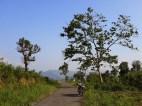 Khumtung-Muallungthu-road-15
