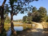 zawlnuma, road, fish pond