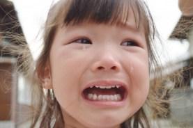 ブログ 素材 11 泣き叫ぶ