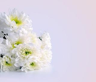 flowers-164028_640_20160315110705c80.jpg