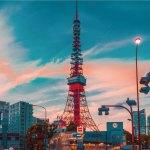 東京の水が肌荒れする原因と対策
