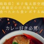 【鳥取】日乃屋カレー米子鬼太郎空港店で【空港限定カレー】を食べたので食レポしてみる。