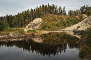Fritt strömmande vatten, sedimentbäddar och sandbrinkar samt omgivningar med lövskog, granskog och tallmoar ger förutsättningar för en mångfald av livsformer. Oreglerad skogsälv med naturlig dynamik. Foto Hans Sundström.