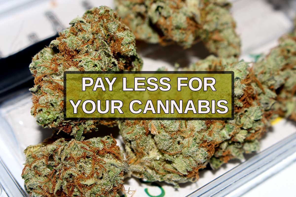 How Can I Get Cheap Weed In Canada? | MJBlog