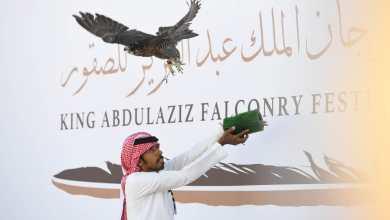 Photo of قصائد الشعر تُدفئ أجواء مهرجان الملك عبدالعزيز للصقور