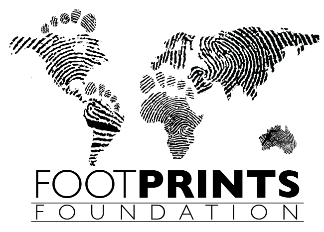 footprint-foundation-logo