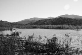 water landscape