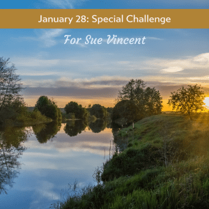 Special Collection Flash Fiction Challenge #carrotranch #literary #community