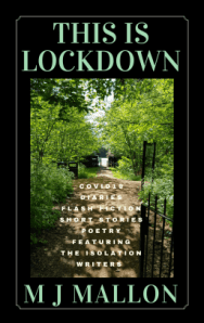 #Bookreview – This is Lockdown by M.J. Mallon – Robbie's inspiration