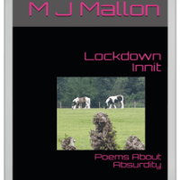 Media Kit: Lockdown Innit Poems About Absurdity #media #kit #poetry #book #lockdown #poems