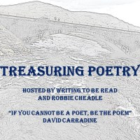 Treasuring Poetry: Meet author and poem M J Mallon | Writing to be Read