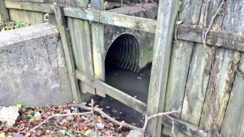 Storm Drain that Shaw Entered