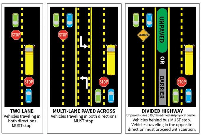 Graphic of School Bus Law