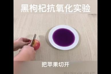 Antimony antioxidant experiment