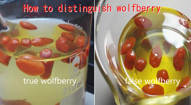 distinguish certified and fake wolfberry