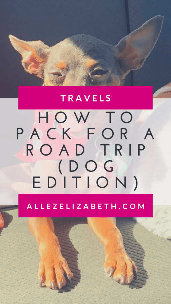 ALLEZ ELIZABETH - PINTEREST - HOW TO PACK FOR A ROAD TRIP (DOG EDITION)