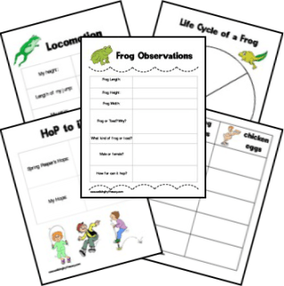 Free Frogs & Toads Nature Study Printables