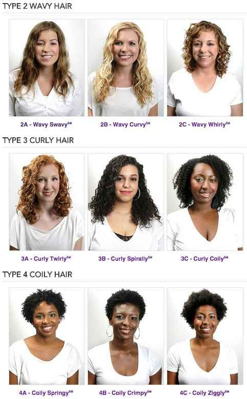 Naturally Curly Hair For Beginners The Ultimate Guide