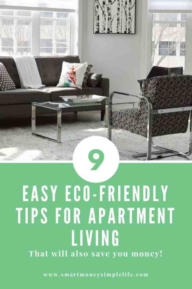 9 Easy Eco Friendly Tips For Apartment