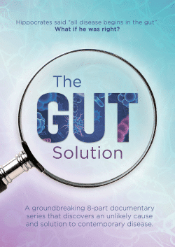 The-Gut-Solution2-o2am8lh8n9lpn1s3w1tzq0bbapl7udgo438glz0eh6