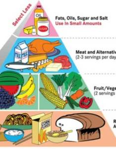 balanced diet food pyramid also amazing ways to maintain chart for men  women rh truweight