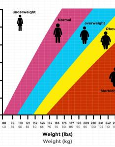 Bmi chart for men women showing height vs weight with categories also indian calculator  truweight rh