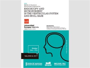 Endoscopy and microsurgery in the ventricular system and skull base