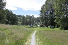 I like paths