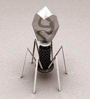 artists impression ofbacteriophage