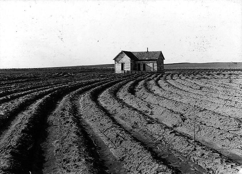 tenantless_farm_texas_panhandle_19382