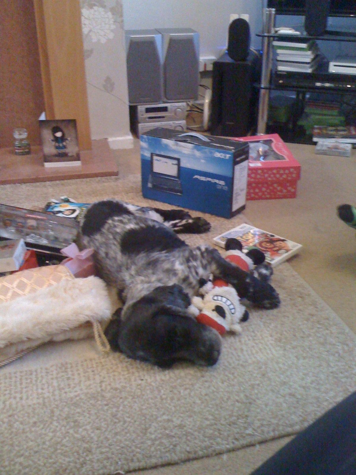 Henry Asleep