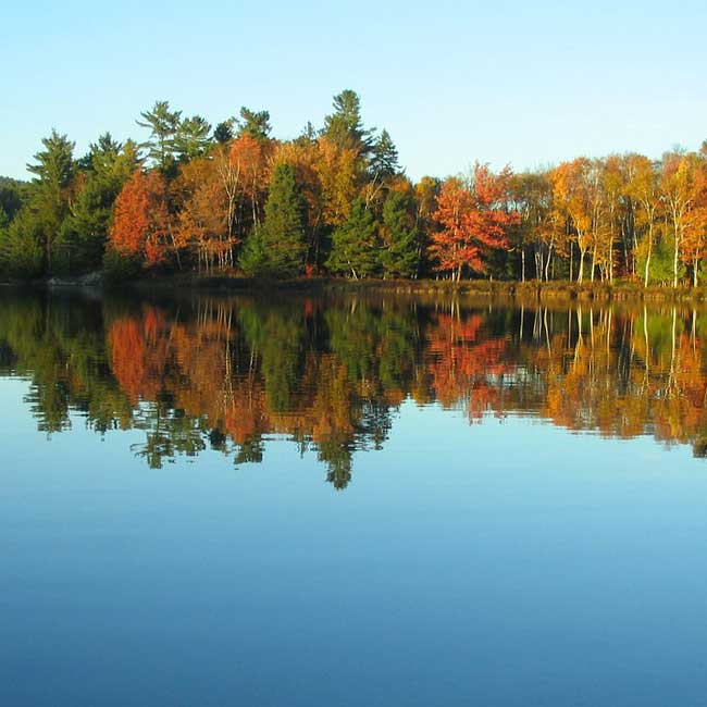 autumn-colors-by-pontoon