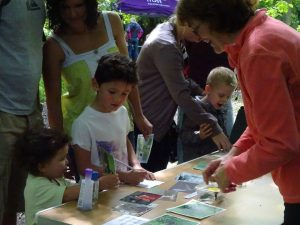 Howe Park Wood Nature Day by Julie Lane 1 July 2016