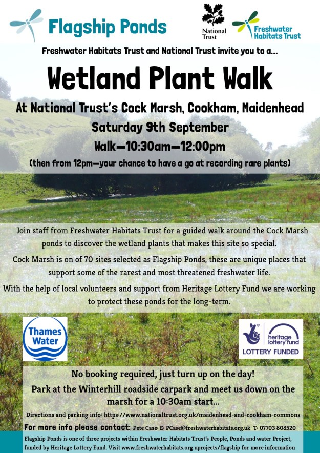 tland Plant Walk 9th Sept 2017