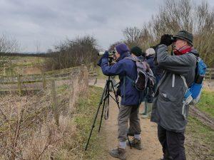 Watching Marsh Harriers Otmoor 13 January 2018