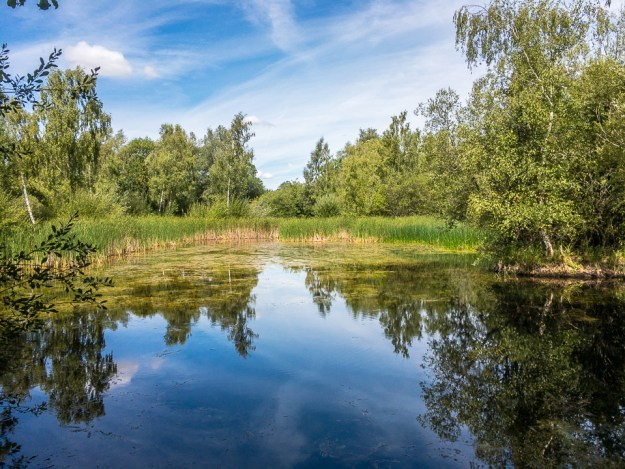 One of the many ponds ©CC BY-NC-SA by Peter Hassett, Felmersham Gravel Pits 11 August 2018