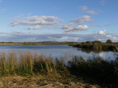 View from second screen ©Harry Appleyard, Otmoor 19 October 2019