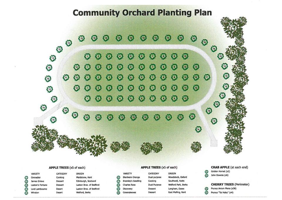 Fenny Stratford Community Orchard Planting Plan