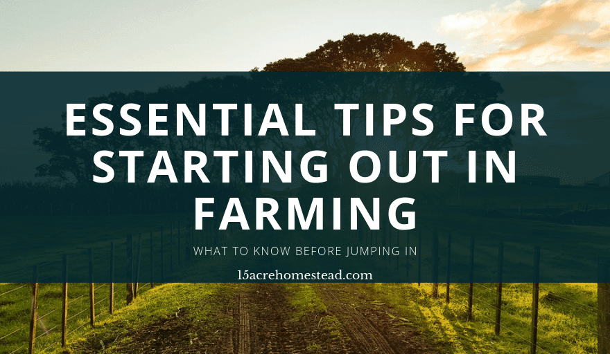 How to start out in farming