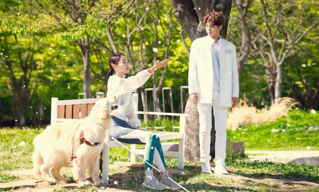 Download Angels Last Mission Love Korean Drama