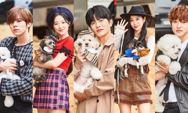 Download Idol Star Dog-agility Championships Korean Show