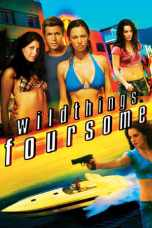 Wild Things: Foursome (2010) BluRay 480p & 720p Full Movie Download