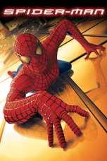 Spider-Man (2002) BluRay 480p & 720p HD Movie Download