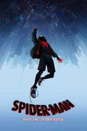 Spider-Man: Into the Spider-Verse (2018) Alternate Cut BluRay 480p & 720p HD Movie Download