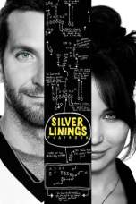 Silver Linings Playbook (2012) BluRay 480p & 720p Free HD Movie Download
